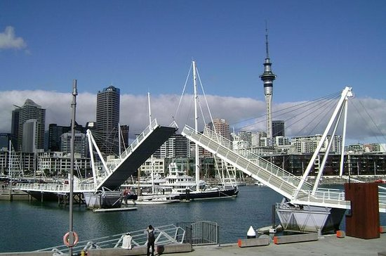 Auckland Shore Excursion: Small-Group...