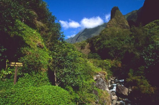 Lahaina Shore Excursion: Tropical...