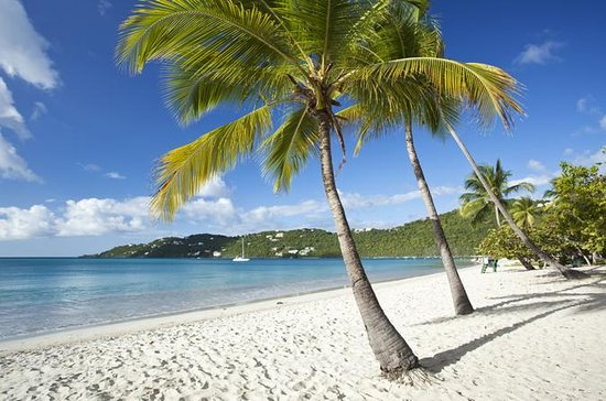 St Thomas Shore Excursion: Shopping, Sightseeing and Beach