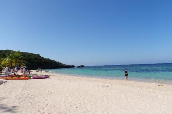 Roatan Shore Excursion: Small-Group...