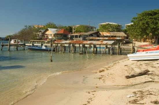 Roatan Shore Excursion: East Island