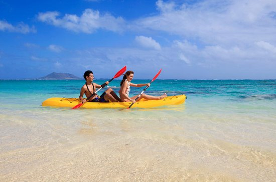 Bermuda Shore Excursion: Kayak Eco-Tour