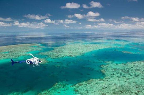 Cairns Shore Excursion: Green Island ...