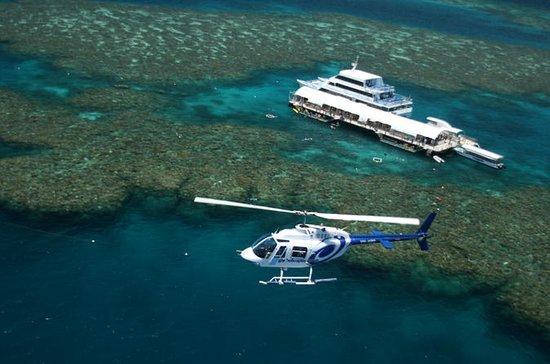 Cairns Shore Excursion: Great Barrier...