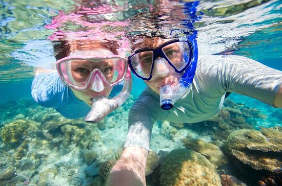 Curacao Shore Excursion: Snorkel...