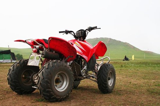 Escursione a St Kitts: ATV Adventure