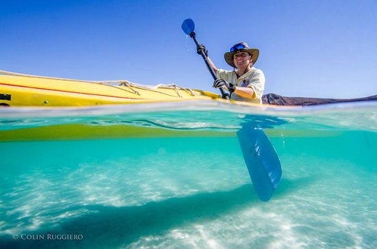 Kayaking in the Sea of Cortez from ...