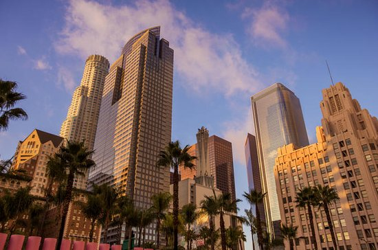 Los Angeles 6-Hour, 5-Stop City Tour with Guide