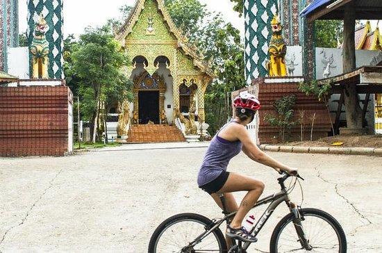 4-dagars Chiang Mai till Chiang Rai ...