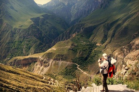 3-Day Hike to Colca Canyon from...