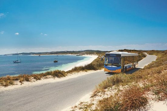 Rottnest Island Explorer Bus Tour from...