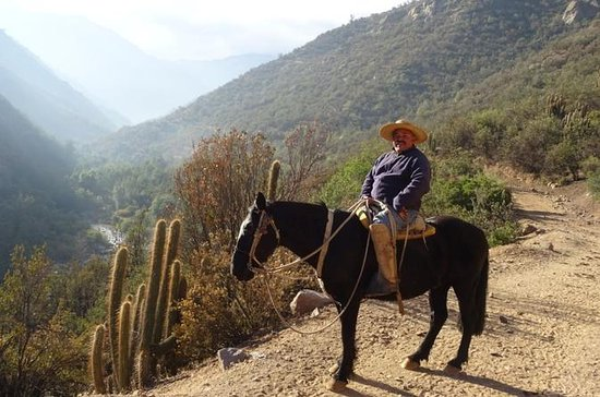 Horse Riding Tour in The Andes from...