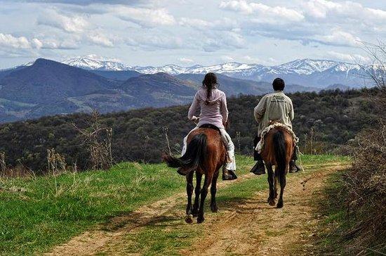Équitation dans les Balkans - Tour du...