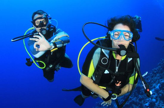 Learn to Dive PADI Open Water Diver...