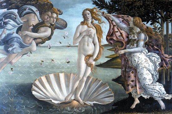 Uffizi och Accademia Galleries ...