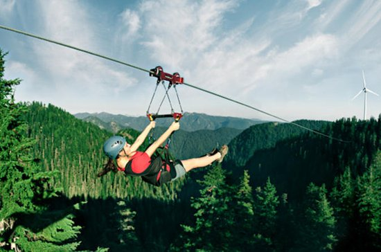 Grouse Mountain Zipline Adventure