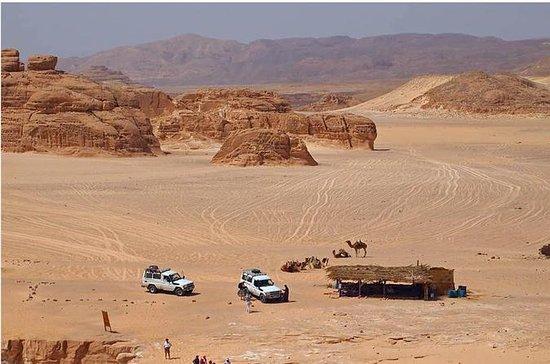 4x4 Jeep Adventure de Dahab