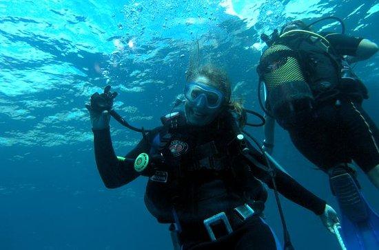 Mallorca Scuba Diving Experience at...