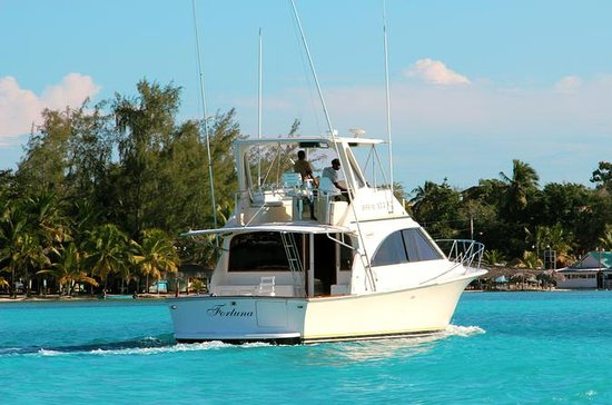 Punta Cana Private Yacht Charter with Snorkel Gear, Open Bar