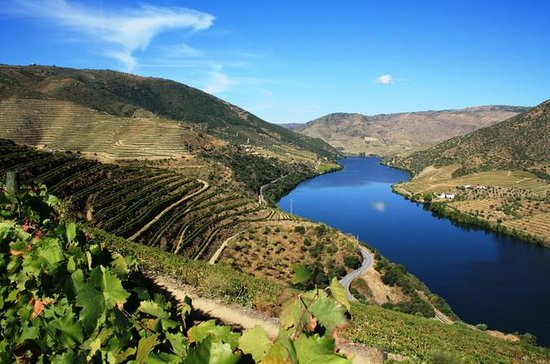 Porto to Douro Valley Wine Region...