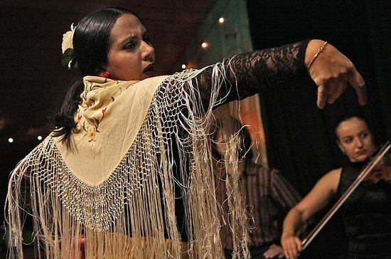 Half Day Flamenco Historical Tour and Show