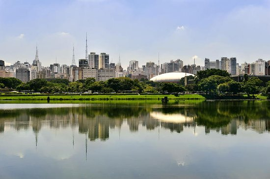 Sao Paulo Private City Tour with...