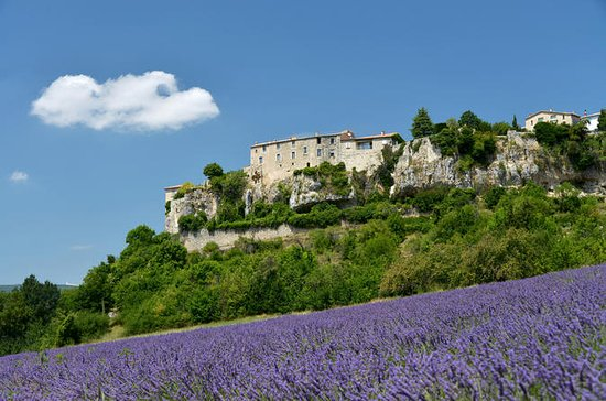 Avignon to Provence Lavender Fields...
