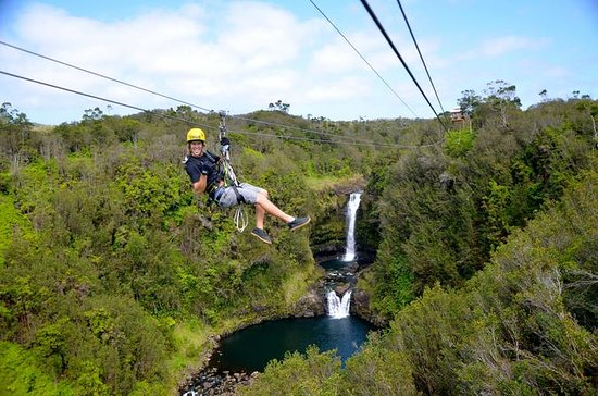 Zip n' Swim- Zipline Through Paradise ...