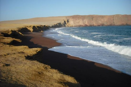 Ballestas Islands and Paracas...