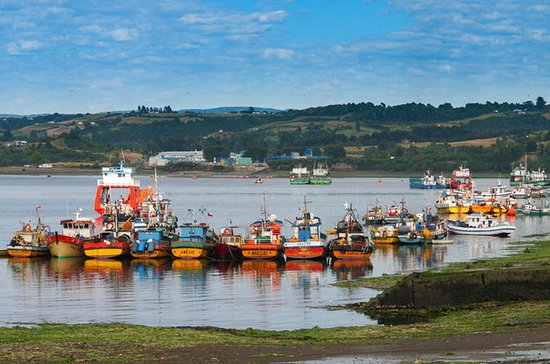 Full-Day Tour Chiloe Istand Including...
