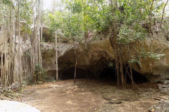 Green Grotto Caves Excursion from...