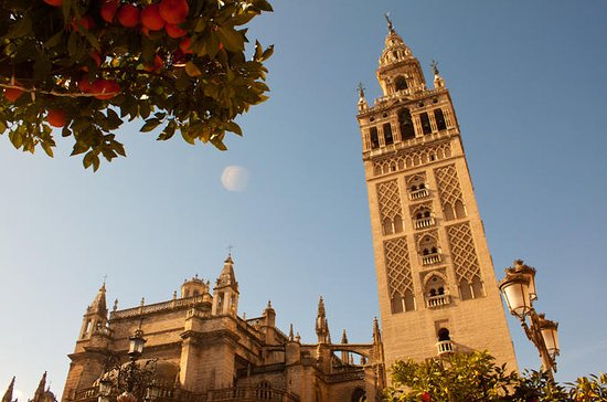 Recorrido a pie de 3 horas por Sevilla