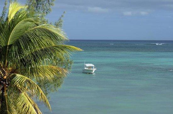 Mauritius Speedboat Cruise from...
