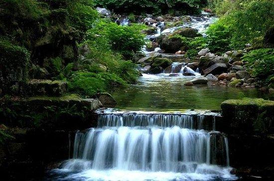 Excursão pelo Parque Nacional...