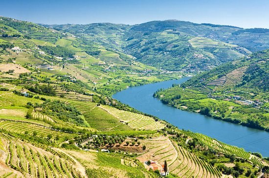 Semi-Private Tour: Wine Region in...