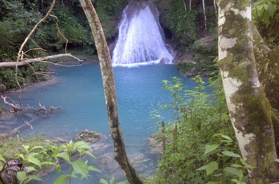 Blue Hole e River Gully Rainforest...