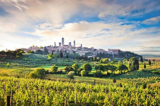 Siena, San Gimignano, Chianti Wine Tasting from Florence
