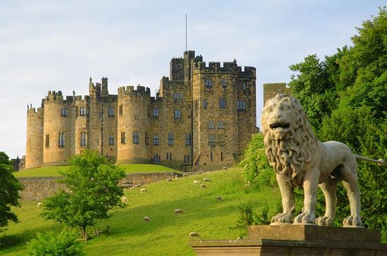 Viking Coast, Alnwick Castle Small-Group Tour from Edinburgh