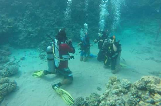 PADI Course: Padi Open Water Diver...