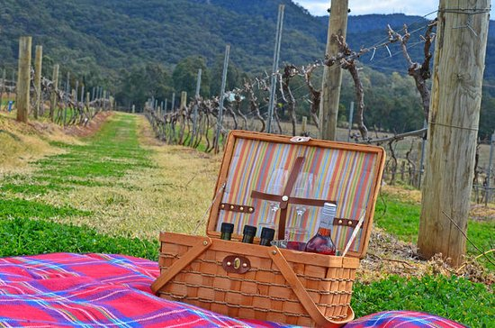 Private Hunter Valley and Gardens Day...
