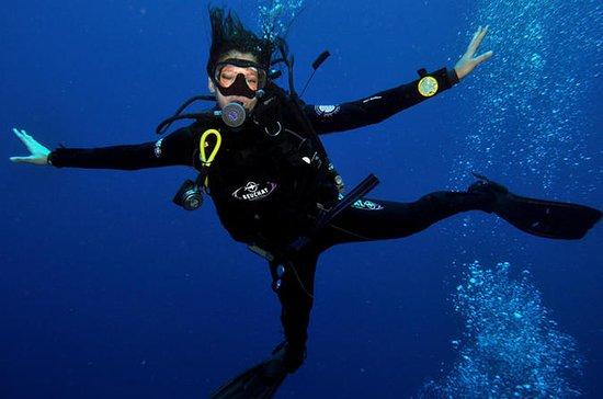 PADI Discover Scuba Diving Course in ...