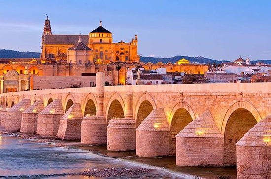 Malaga to Cordoba Day Trip with...