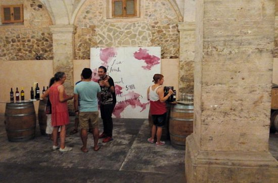 Wine Tasting Tour in Mallorca