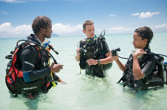 Dive Courses in the Seychelles