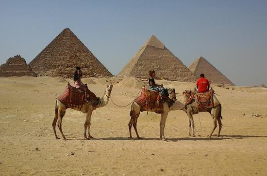 Sightseeing Day Tour to Pyramids...