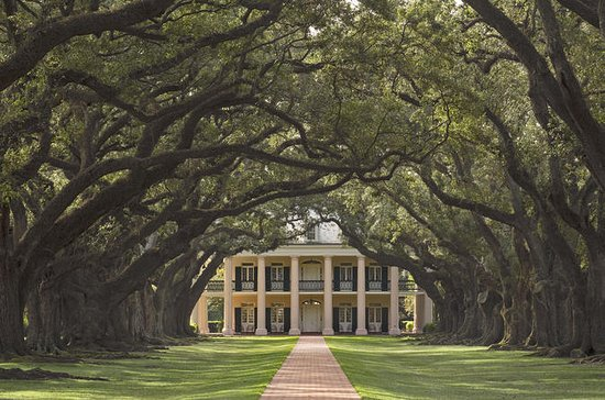 Oak Alley and Laura Plantation Tour...