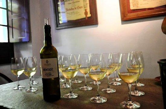 Excursão vinícola na Península de...