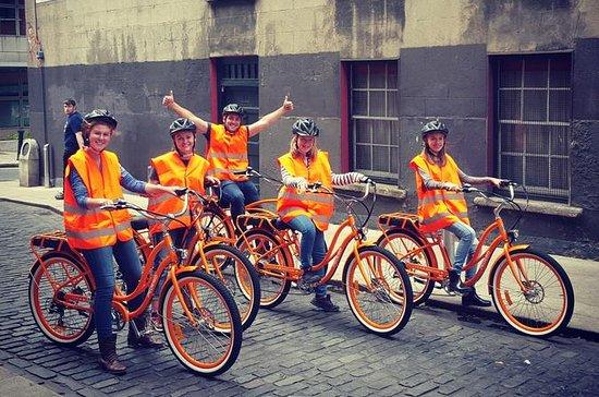Tour in bici elettrica a Dublino