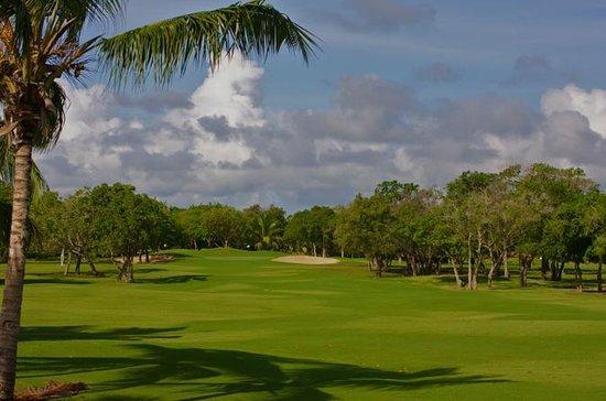 Cocotal Golf e Country Club em Punta...