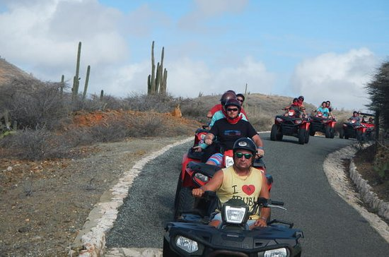 Aruba Shore Excursion: ATV Island...